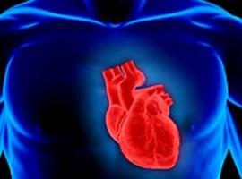 Лечение народными средствами распространенного заболевания для всех возрастов – аритмии сердца
