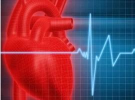 Как нормализовать учащенное сердцебиение? Способы лечения тахикардии в домашних условиях.