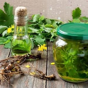 Чистотел — как правильно использовать траву